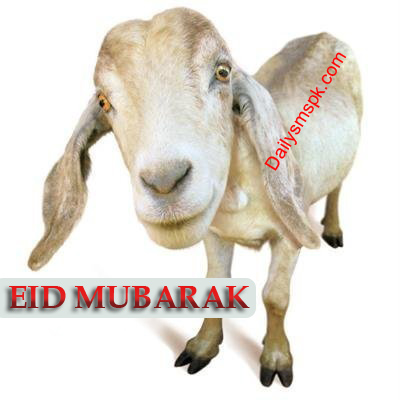 Best-Bakra-Eid-Wallpapers-Cards-2012 Facebook