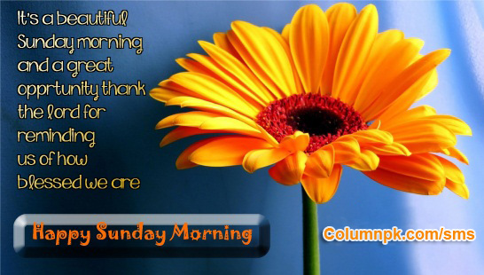 happy sunday pictures images with quotes  Happy Sunday Wishes Quote Card Images