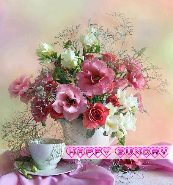 Happy Sunday Quotes Pics Wishes Wallpapers FB Facebook