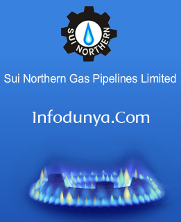 sui Check Your SNGPL Sui Gas Bill Online