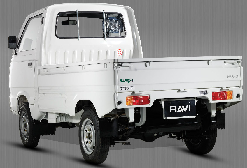 Suzuki-Ravi-2013-Back