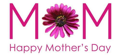 Mothers Day Flowers 2013 Greeting Cards Wallpapers