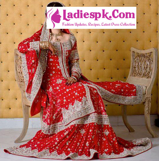 Red  Beautiful Bridal Wedding Open Shirt Dresses 2013 Pakistan India